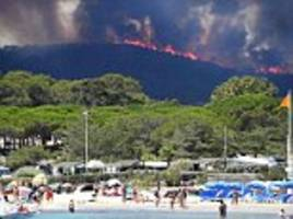 south of france wildfires started by 'bored' boy of 14