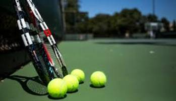 india take 1-0 lead over canada in davis cup tennis world group play-offs tie at edmonton