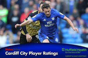 cardiff city ratings: craig bryson energetic on first start and sol bamba excellent as bluebirds snatch late draw