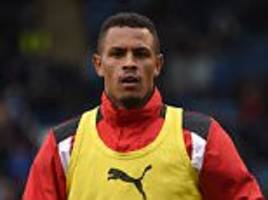 police probe rotherham striker's racial abuse claim