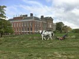 Shire horses pull Victorian mower at Kensington Palace