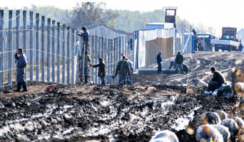 hungary builds a wall, cuts illegal immigration by over 99%