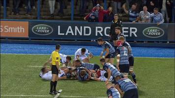 video: spectator at cardiff arms park throws drink towards official