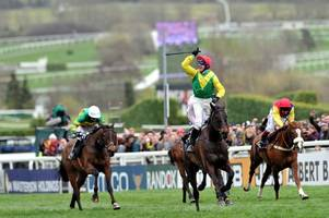 leopardstown to auteuil: minella rocco and taquin du seuil go on their travels to start the season