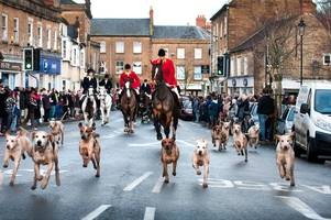 trail hunting on national trust land in somerset and dorset could soon be a thing of the past