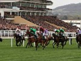Horse trainers banned for illegal substance use