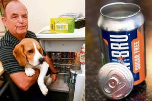 mystery irn-bru can explosion probed after fridge blast terrifies bud and his beagle