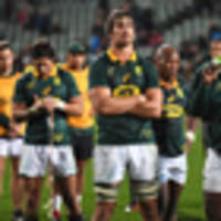 rugby: boks' wives, girlfriends targeted by 'terrible people' after all blacks thrashing
