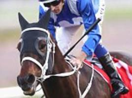chris waller says winx could come to europe in 2018