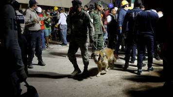 Mexico earthquake: Many children killed at primary school