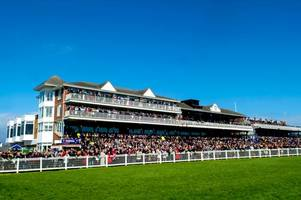 blow for ayr races after ladies day is cancelled due to waterlogged ground