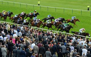 horse racing betting tips: donjuan can be triumphant in ayr gold cup