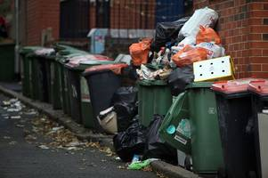 council could issue fines to wheelie bin offenders