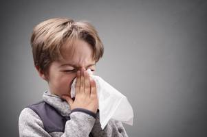 Public Health England argues it is 'too early' to know if deadly 'Aussie flu' will head towards the UK