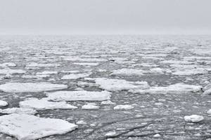 scientists express concern after discovery of plastic chunks in arctic ice