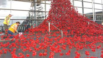 ww1 weeping window poppies boost assembly visitors