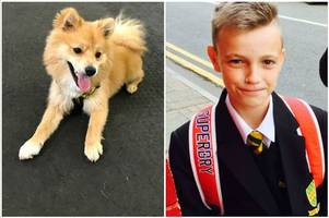 a teenager risked his own life to save a drowning puppy from a river