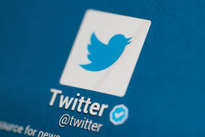 Feeling Truncated On Twitter? The Blue Bird Offers More Space To Speak