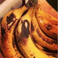 bob marley spotted in a banana