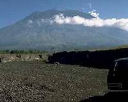 rescuers race to save animals from bali volcano