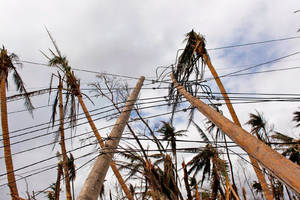 Puerto Rico governor will discuss Tesla solar systems with Elon Musk