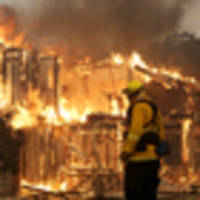 One dead as wind-whipped wildfires sweep into California wine country