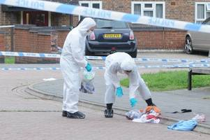 20-year-old man charged over murder of daniel adger in south ockendon