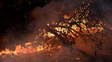 California wildfires: Death toll climbs to 29