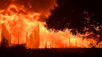 Wildfires: Why they start and how they can be stopped