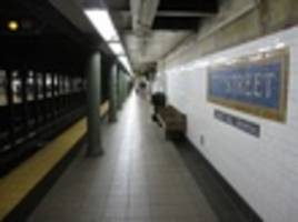 'Pissing Pug' Artist Hit And Killed By Uptown 6 Train