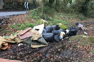 Devon man pleads guilty to fly-tipping on country lane – again