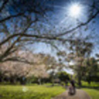 Weather forecast: delightful spring weekend followed by more warm weather