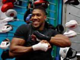 anthony joshua relaxed and happy as he holds open work-out