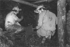 thirty year quest to remember the 700 miners who died in the forest of dean pits