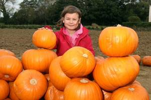 10 Gloucestershire Halloween events for children