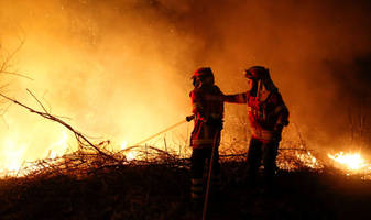 Wildfire toll reaches 41 in Portugal, 4 in Spain