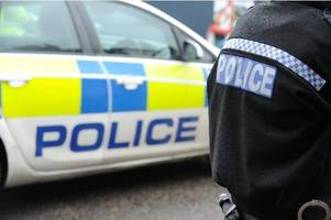 Police officers have bricks thrown at their car while attending the scene of a stolen digger