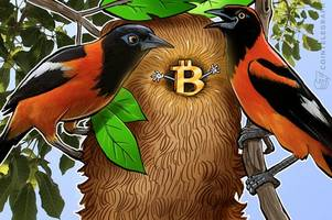 bitcoin exchange localbitcoins posts fourfold trading volume increase in venezuela