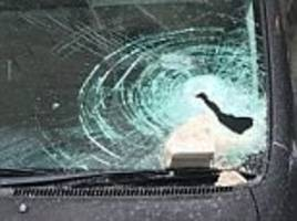 Probe after a stone slab falls off Parliament building