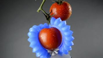 Soft robotics will pick fruit with finesse and save your life too