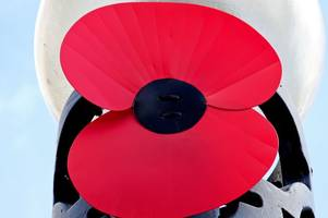 large plastic poppies could be placed on lampposts around stretton to mark remembrance sunday