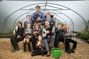 gulval school's impressive transformation down to new principal and a big family of animals