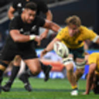 all you need to know: all blacks v wallabies