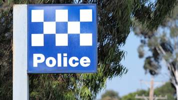australian woman fatally attacked by dog