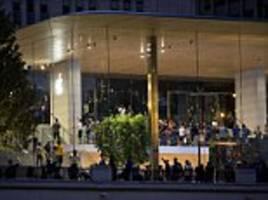 chicago apple store to dim lights as birds keep hitting it