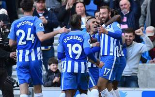 brighton at home in premier league, insists hughton