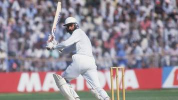 what do you remember of the 1987 cricket world cup?