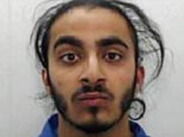 hit and run driver ajay singh sentenced to 8 years