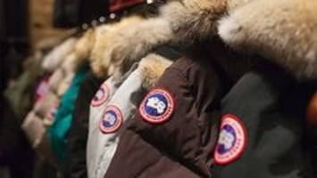 peta releases disturbing hidden camera video of canada goose supplier in manitoba