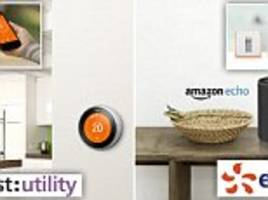 energy deals offer a free nest thermostat or amazon echo
